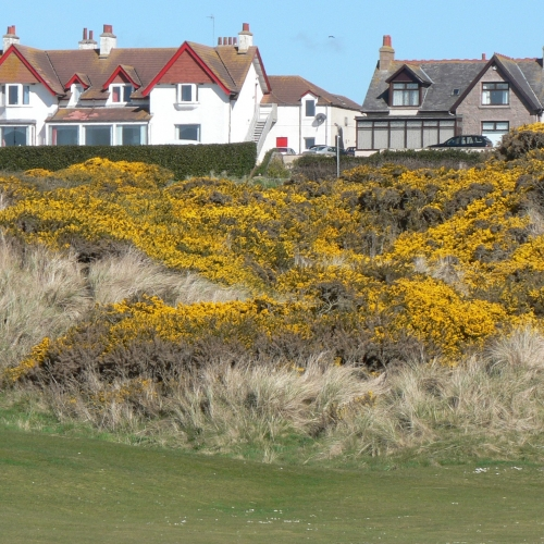 Cruden Bay Clubhouse